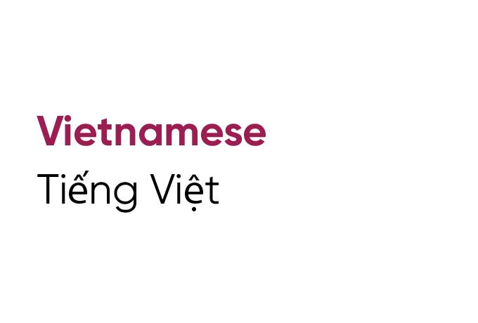 Language Tile Vietnamese